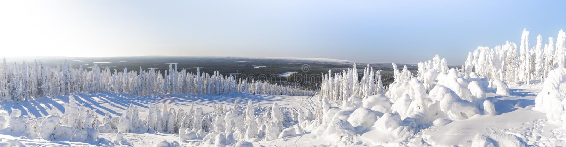 Paisagem do inverno em Lapland foto de stock royalty free
