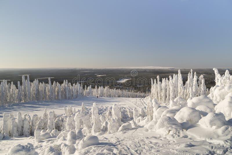 Paisagem do inverno em Lapland imagens de stock