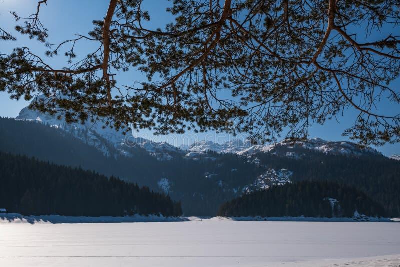 Paisagem do inverno em Montenegro imagem de stock royalty free