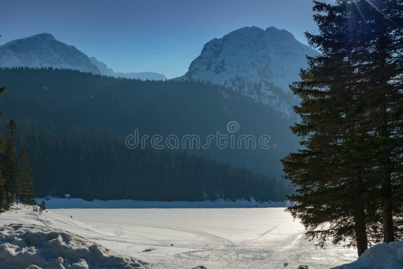 Paisagem do inverno em Montenegro foto de stock