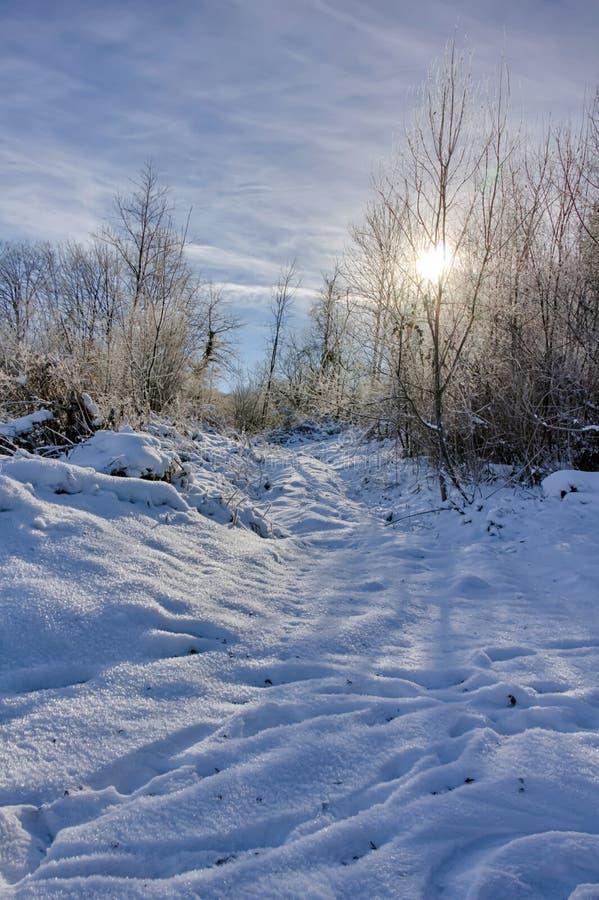 Paisagem do inverno em Ornans fotos de stock royalty free