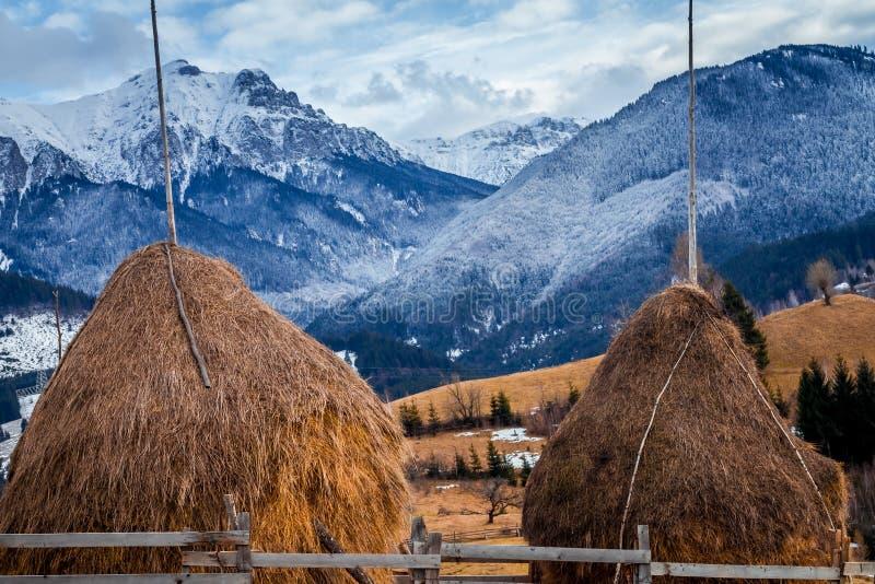 Paisagem do inverno em Romania fotografia de stock royalty free