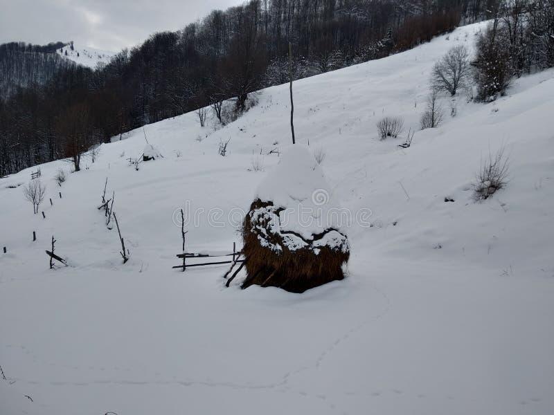 Paisagem do inverno em Romania Monte de feno e montanhas nevados Carpathians vistos da vila de Parva, a Transilvânia N romeno fotos de stock royalty free