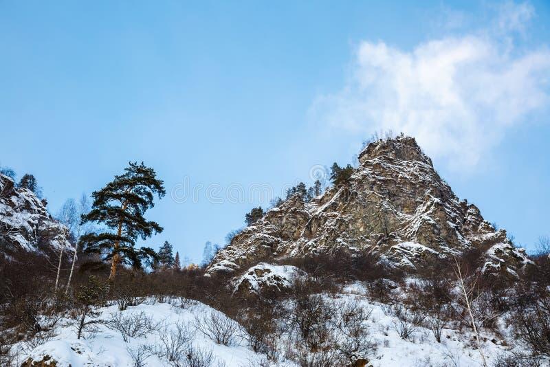 Paisagem do inverno em Sibéria imagem de stock royalty free