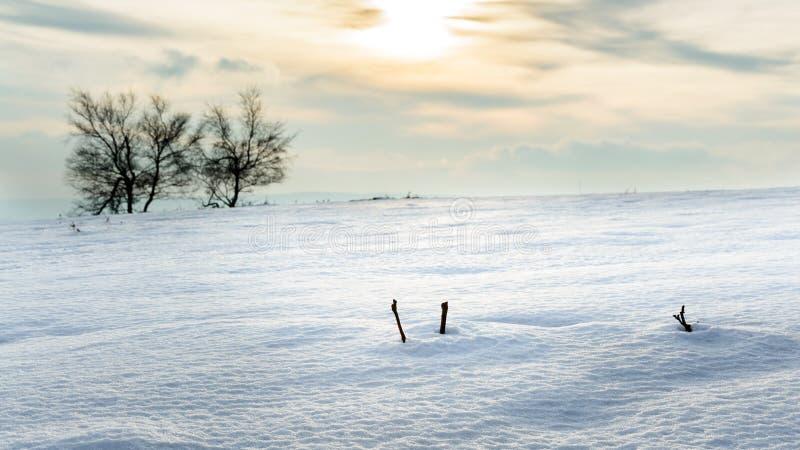Paisagem do inverno em um dia ensolarado nos montes imagens de stock royalty free