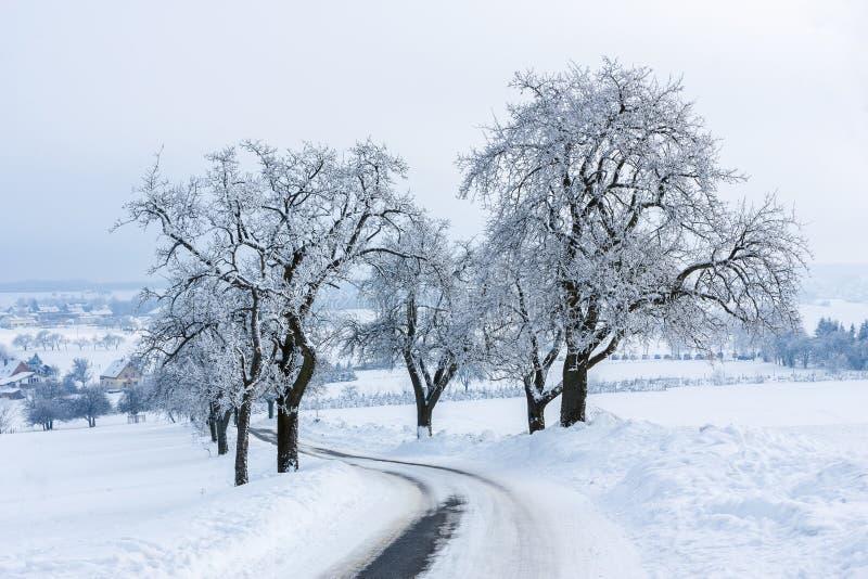 Paisagem do inverno A estrada coberto de neve escorregadiço entre árvores geada-cobertas conduz à vila fotos de stock