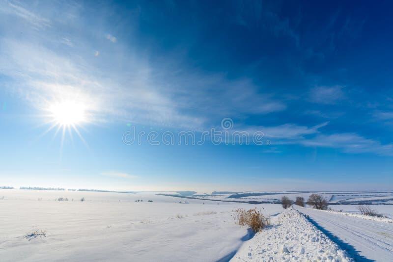 Paisagem do inverno estrada nevado branca, céu azul, árvores cobertas com a geada fotos de stock royalty free