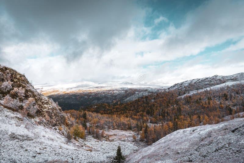 Paisagem do inverno - montanha com árvores cobertos de neve e céu nebuloso no parque fotografia de stock