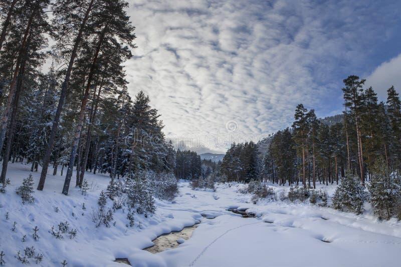 Paisagem do inverno na montanha imagem de stock