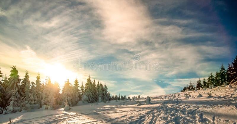 Paisagem do inverno na montanha de Harz imagens de stock royalty free