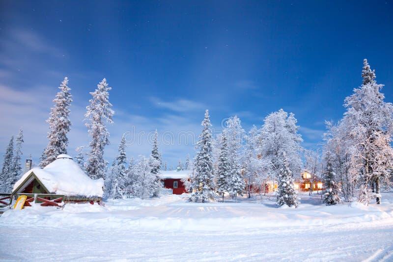 Paisagem do inverno na noite imagem de stock royalty free