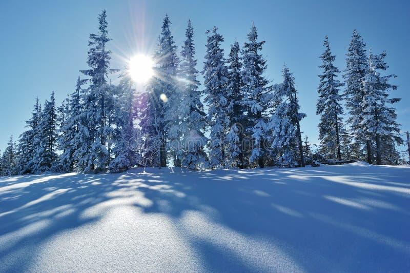 Paisagem do inverno nas montanhas fotos de stock royalty free