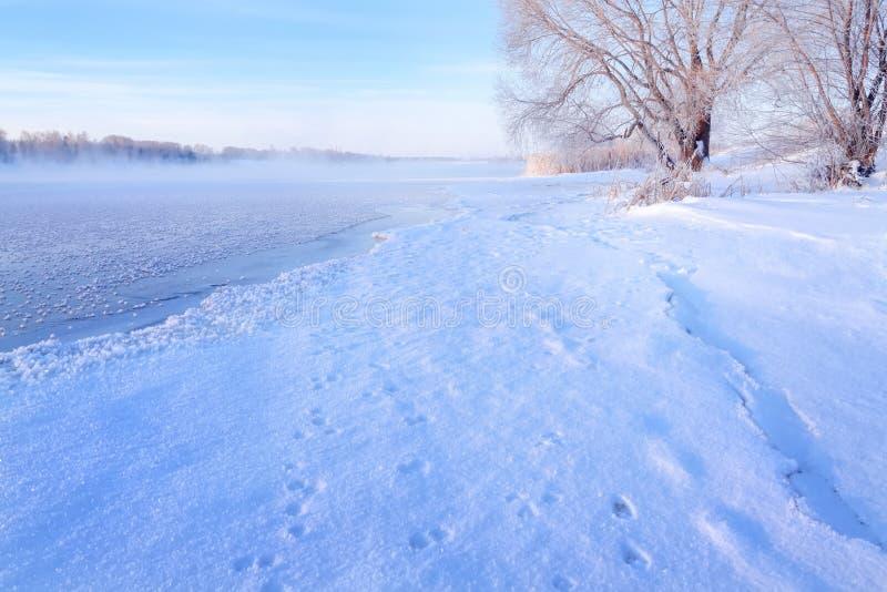 Paisagem do inverno no amanhecer que negligencia os bancos do Rio Volga fotografia de stock