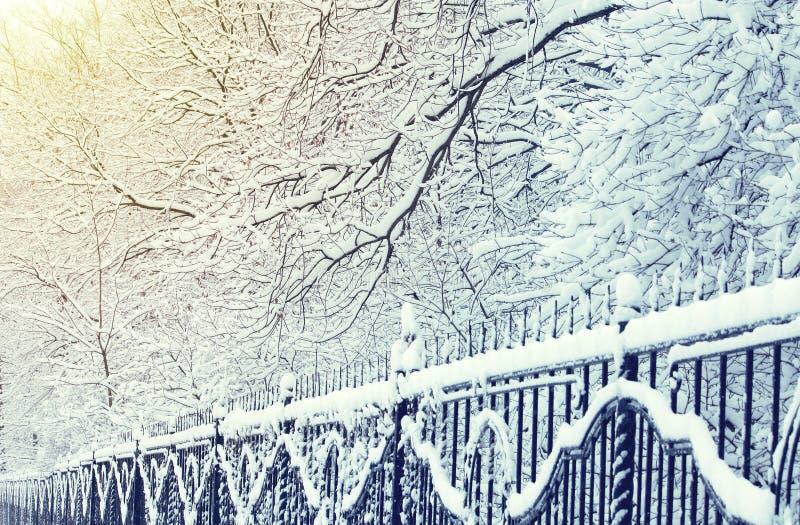Paisagem do inverno no parque da cidade, cerca do ferro na neve imagem de stock royalty free