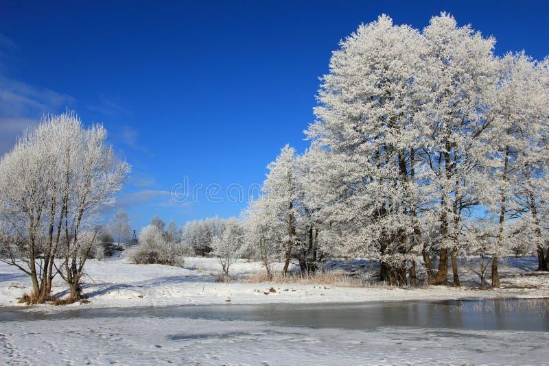 Paisagem do inverno no Polônia, região de Masurien foto de stock