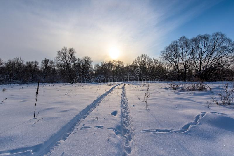 Paisagem do inverno no por do sol campo na neve, o sol no horizonte a neve brilha no frio de congelação imagem de stock