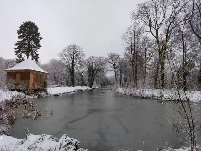 Paisagem do inverno pelo lago foto de stock royalty free