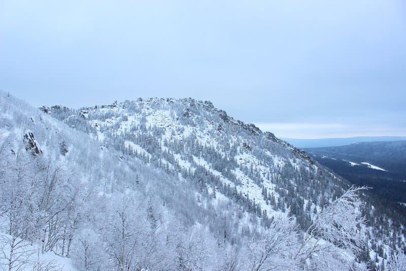paisagem do inverno - uma montanha coberta na neve fotografia de stock