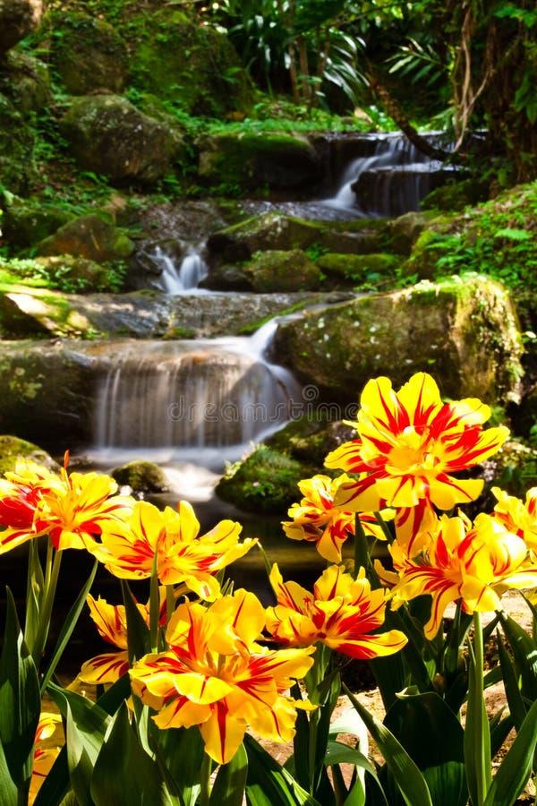 Paisagem do jardim com rio imagens de stock royalty free
