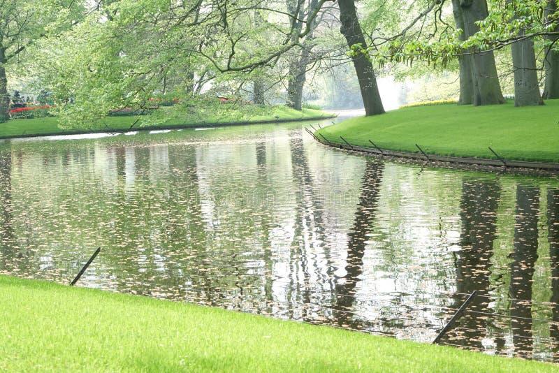 Paisagem do jardim com vias navegáveis e reflexões da árvore imagem de stock