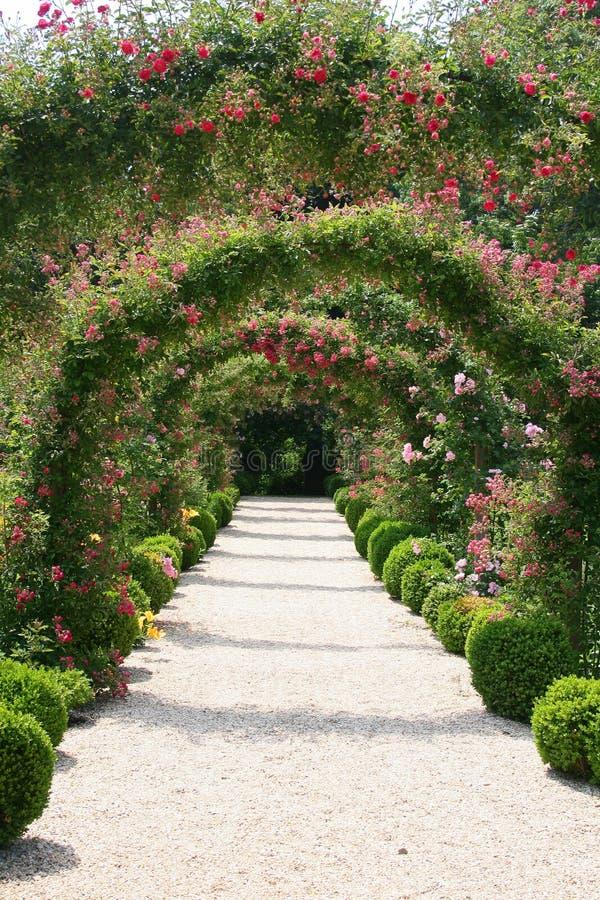 Paisagem do jardim de rosas imagens de stock