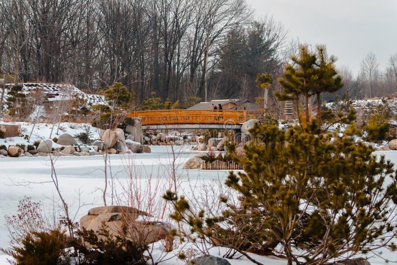 Paisagem do jardim japonês de Frederik Meijer Gardens no inverno fotografia de stock royalty free