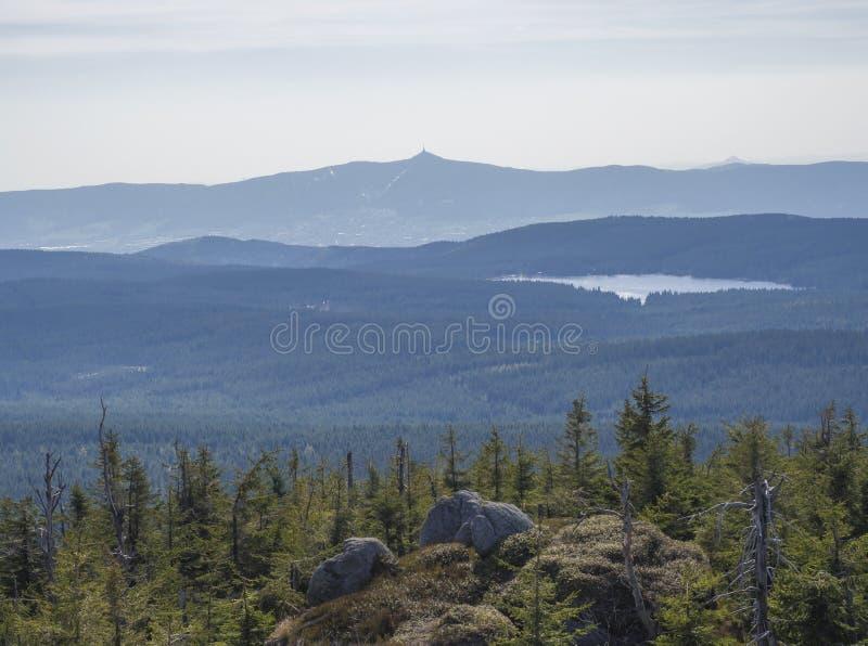 Paisagem do jizerske hory, vista das montanhas de Jizera do pico da montanha do holubnik com a floresta verde lux?ria do abeto ve fotos de stock