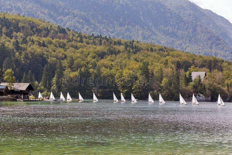 A paisagem do lago Bohinj com única navigação yachts, Eslovênia fotografia de stock royalty free