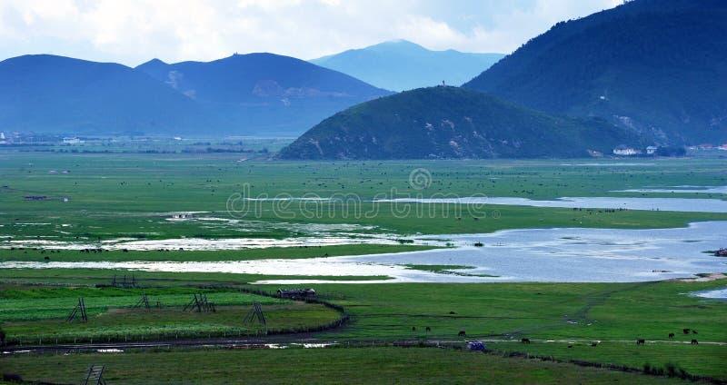 Paisagem do lago, da pastagem e do rio fotografia de stock