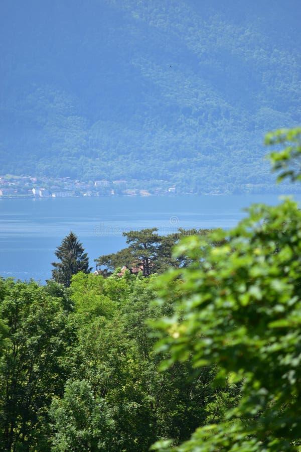 Paisagem do lago Genebra entre algumas árvores com bokeh na primeira terra fotografia de stock royalty free