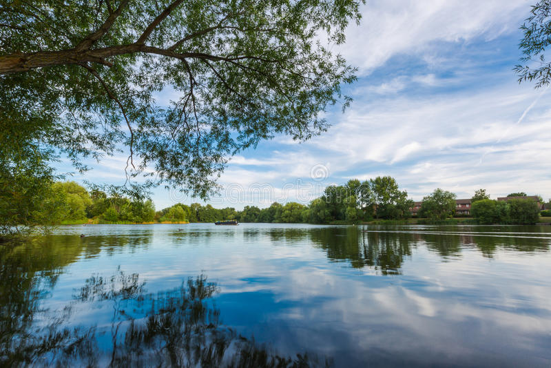 Paisagem do lago summer com árvores e o arbusto verdes, Woking, Surrey fotos de stock royalty free