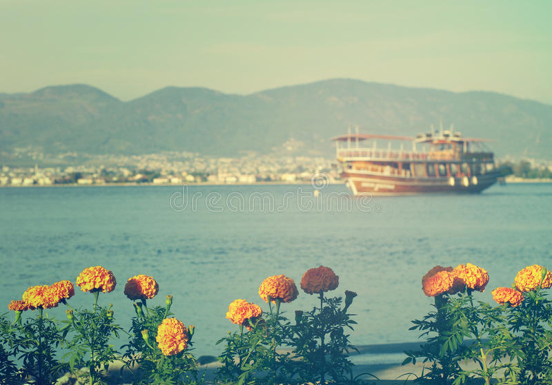 Paisagem do mar com as flores amarelas brilhantes do verão e o navio na distância mim imagem de stock