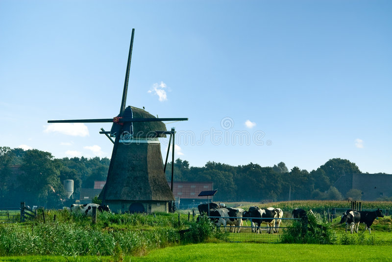 Paisagem do moinho de vento fotos de stock royalty free