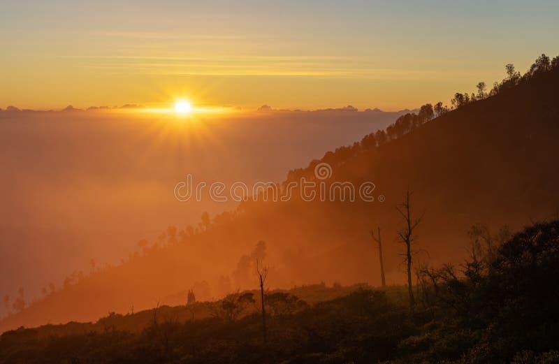 Paisagem do nascer do sol, árvores da silhueta e cordilheira com luz solar amarela no nascer do sol da manhã foto de stock