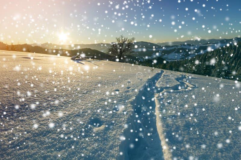 Paisagem do Natal do inverno no alvorecer Trajeto humano da trilha da pegada na neve profunda branca de cristal através do campo  foto de stock