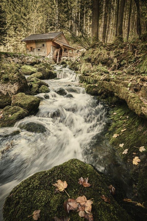 Paisagem do outono com cachoeira pequena imagem de stock