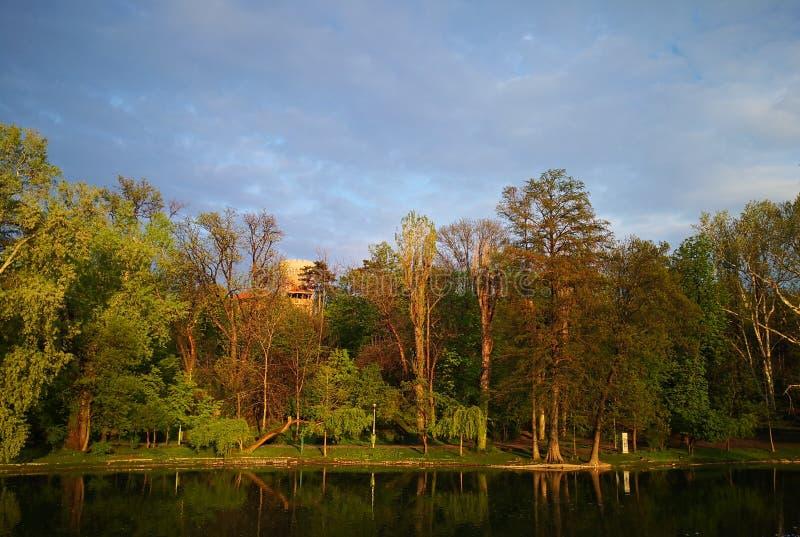 Paisagem do outono com lago e ?rvores fotos de stock royalty free