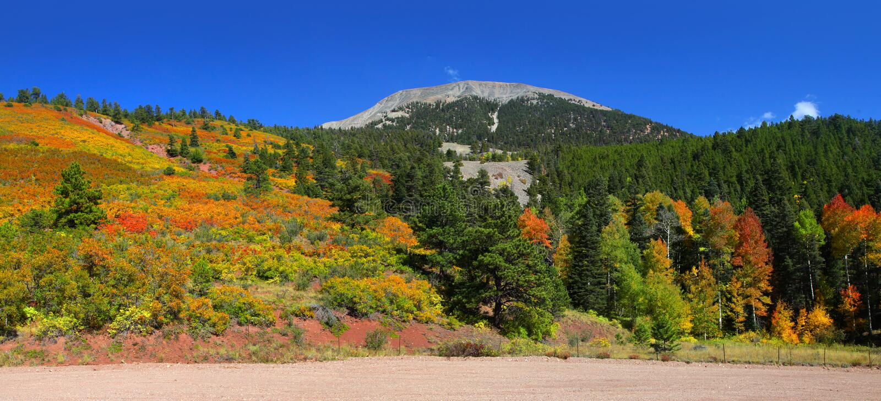 Paisagem do outono em Colorado foto de stock royalty free