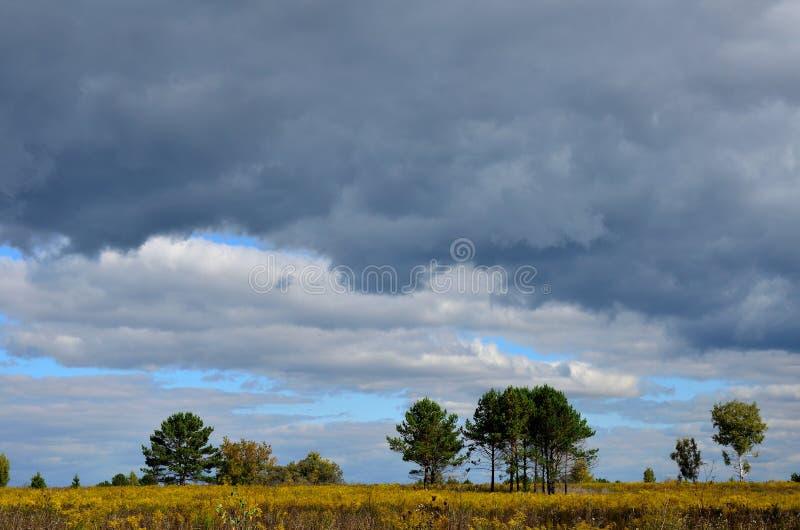 Paisagem do outono em Sibéria fotografia de stock royalty free