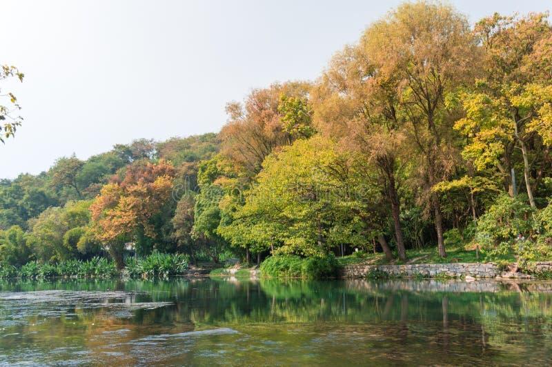Paisagem do outono, folhas coloridas na opinião de árvores imagem de stock royalty free