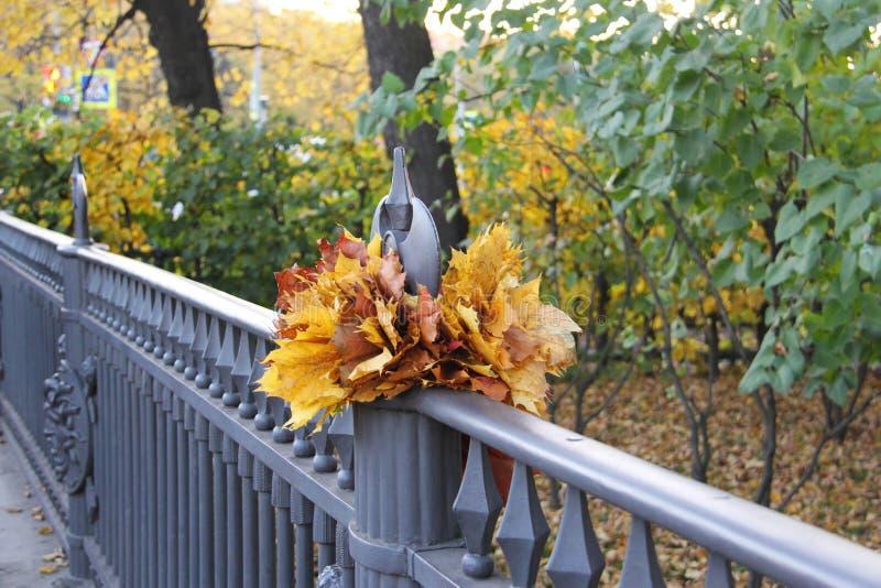 Paisagem do outono na cerca da ponte fotos de stock