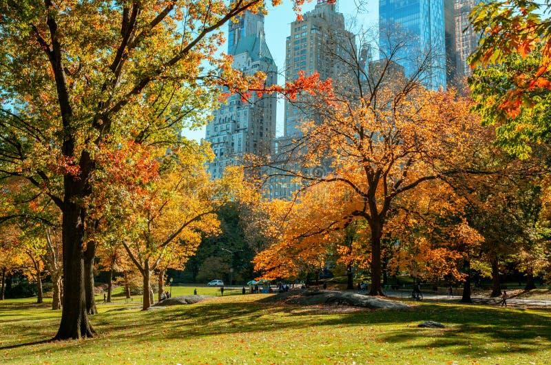 Paisagem do outono no Central Park New York City EUA fotos de stock