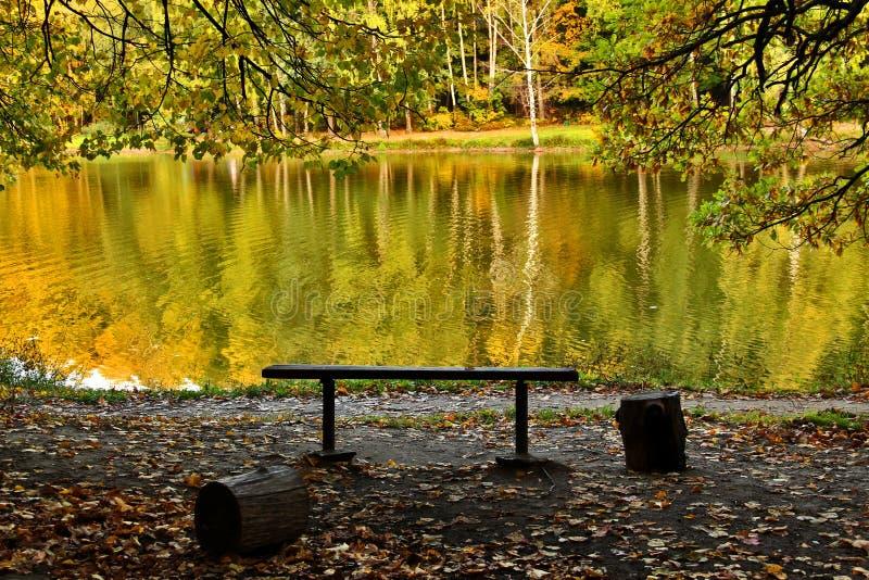 Paisagem do outono no lago Parque na queda Outono dourado imagem de stock royalty free