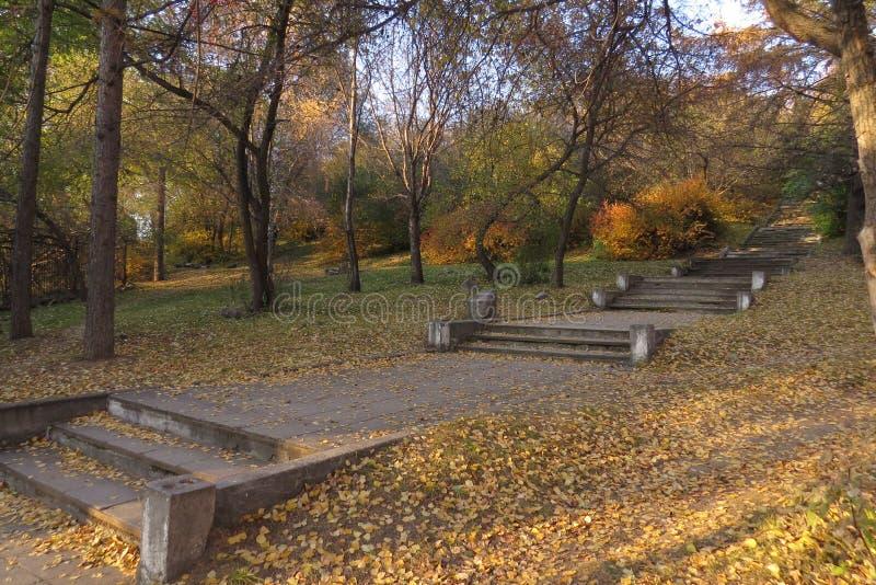 Paisagem do outono no parque velho imagens de stock royalty free