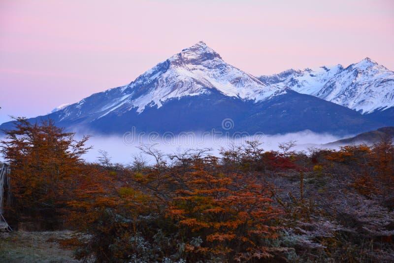 Paisagem do outono no Patagonia Argentina de Puerto Natales fotos de stock