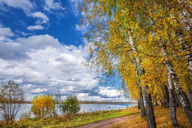 Paisagem do outono no rio Registro de Sibéria ocidental, Novosibirsk imagens de stock royalty free