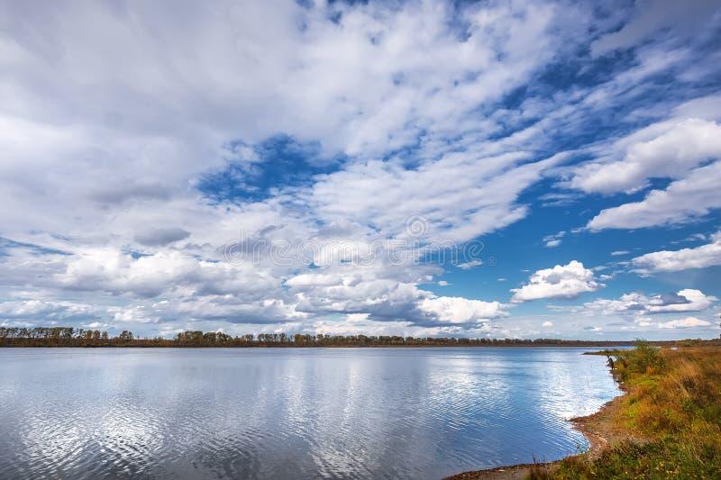 Paisagem do outono no rio Registro de Sibéria ocidental, Novosibirsk fotografia de stock royalty free