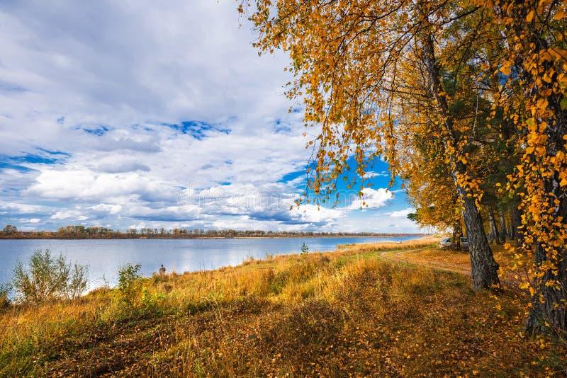 Paisagem do outono no rio Registro de Sibéria ocidental, Novosibirsk imagem de stock