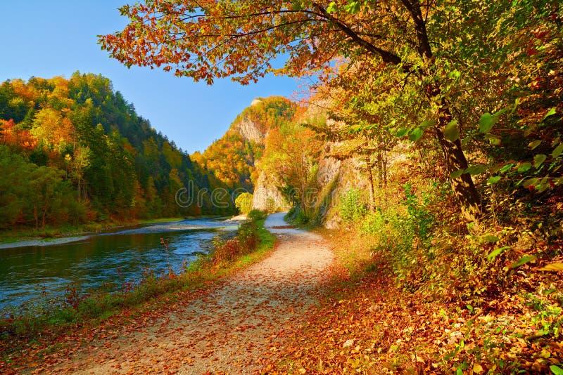 Paisagem do outono pelo desfiladeiro do rio de Dunajec. imagens de stock