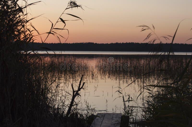 Paisagem do outono do por do sol com o passadiço e os juncos que crescem na água do lago imagens de stock royalty free
